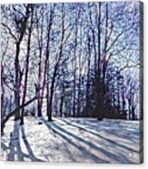 Cathedral Skies Acrylic Print