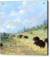 Catlin: Elk & Buffalo Acrylic Print