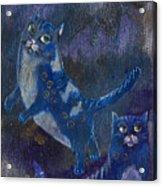 Cats And Reiki Acrylic Print
