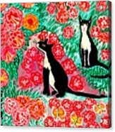 Cats And Roses Acrylic Print