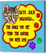 Cats Are Magical Acrylic Print