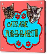 Cats Are Pur-r-r-fect Acrylic Print