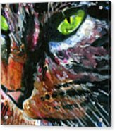 Cats Eyes 11 Acrylic Print