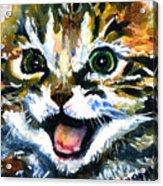 Cats Eyes 15 Acrylic Print