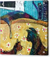 Cats Hangin' Out  Acrylic Print