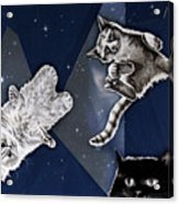 Cats In Space Acrylic Print
