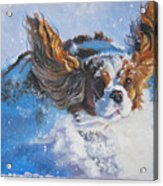 Cavalier King Charles Spaniel Blenheim In Snow Acrylic Print by Lee Ann Shepard