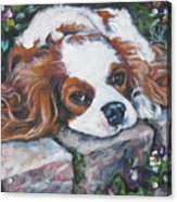 Cavalier King Charles Spaniel In The Pansies  Acrylic Print by Lee Ann Shepard