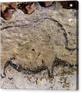 Cave Art: Rhinoceros Acrylic Print