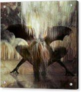 Cave Dweller Acrylic Print