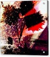 Cayenne Floral Acrylic Print
