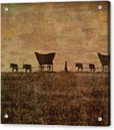 Pioneers Acrylic Print