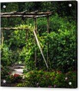 Cedar Arbor Acrylic Print
