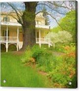 Cedar Grove In Spring Acrylic Print