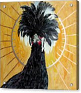 Celestial Chicken - Lady Hawk Acrylic Print