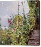 Celia Thaxters Garden Acrylic Print