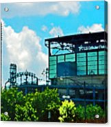 Cellular Field Acrylic Print