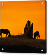 Celtic Horses At Sunset Acrylic Print