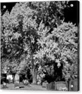 Cemetery Infrared Acrylic Print