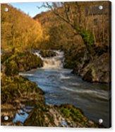 Cenarth Falls Acrylic Print
