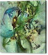 Censurable Proportion  Id 16098-014109-35150 Acrylic Print