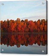 Centennial Lake Autumn - In Full Autumn Bloom Acrylic Print