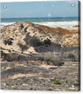 Central Coast Sand Dunes Acrylic Print