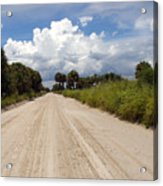 Central Florida Back Road Acrylic Print