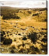 Central Highlands Of Tasmania Acrylic Print