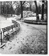 Central Park 3 Acrylic Print by Wayne Gill