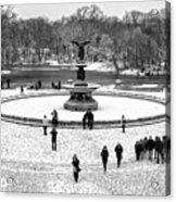 Central Park 5 Acrylic Print