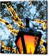 Central Park 6546 Acrylic Print