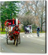 Central Park Horse And Buggy Rides New York City Acrylic Print