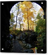 Central Park North Woods In The Fall Acrylic Print