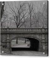 Central Park Nyc Acrylic Print
