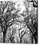 Central Park Nyc In Black And White Acrylic Print