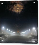Central Park Shadows Acrylic Print by JC Findley