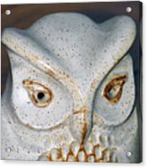 Ceramic Owl. Acrylic Print