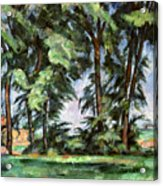 Cezanne: Trees, C1885-87 Acrylic Print