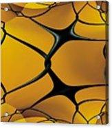 Chain Link Fractal Acrylic Print