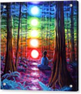 Chakra Meditation In The Redwoods Acrylic Print by Laura Iverson
