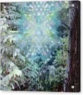 Chalice-tree Spirit In The Forest V3 Acrylic Print