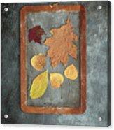 Chalkboard Leaves Acrylic Print