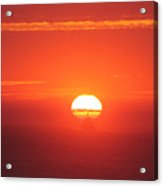 Challenging The Sun Acrylic Print