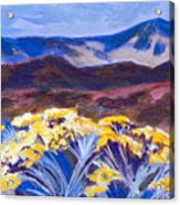 Chamisa And Mountains Of Santa Fe Acrylic Print