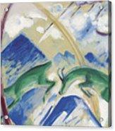 Chamois Acrylic Print