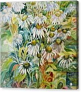 Chamomile Acrylic Print by Therese AbouNader