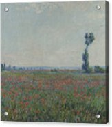 Champ De Coquelicots 1881 Painting by Claude Monet