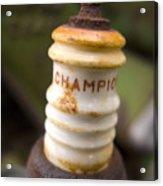 Champion Acrylic Print