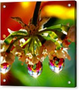 Chandelier From The Rain Drops Acrylic Print